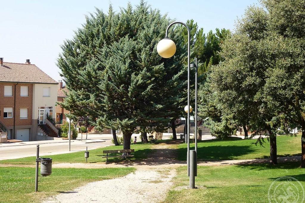 Encina, Pinos, farolas, senda y calle de la Imaginación en Camaretas
